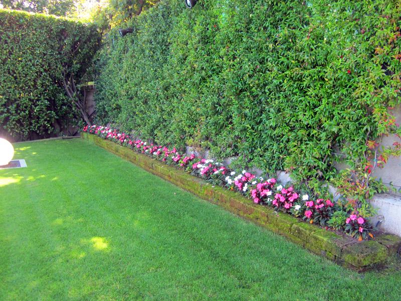 fioriture stagionali (4)