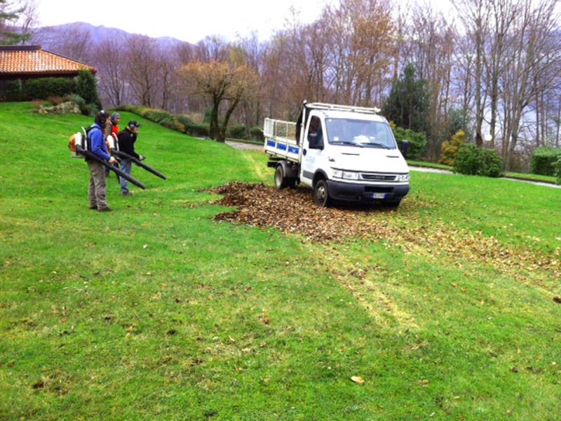 raccolta foglie (3)